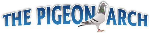 pigeon-arch-logo