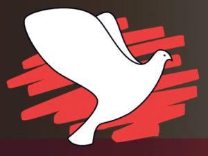 duif-logo