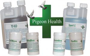 Pigeon Health